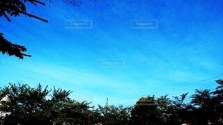 空の写真・画像素材[4392583]