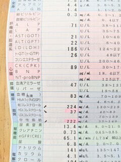 検査報告書の写真・画像素材[4529218]