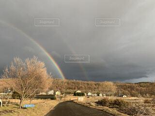 虹の向こうに…の写真・画像素材[4441629]