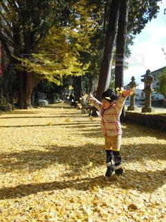 草の中に立っている小さな男の子の写真・画像素材[4903296]