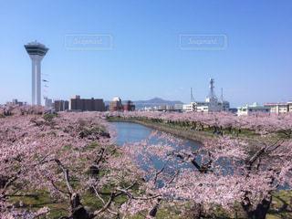 No.187196 風景