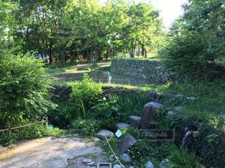 岐阜の公園ですの写真・画像素材[1192848]