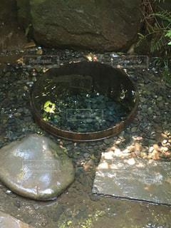 清正の井戸の写真・画像素材[1313903]