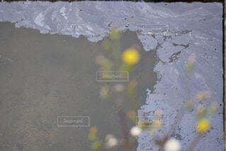 油で汚染された水路の写真・画像素材[4417465]