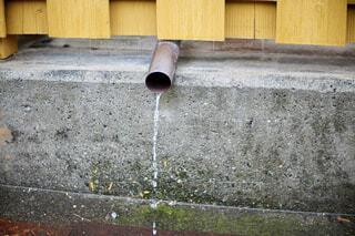 雨水の写真・画像素材[4420730]