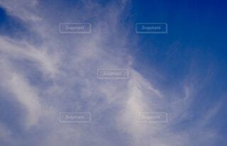 青い空の写真・画像素材[4454470]