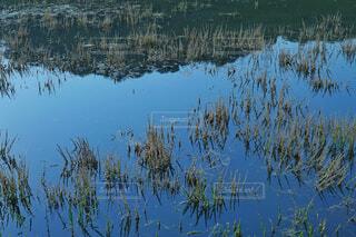 水面に反射する青空の写真・画像素材[4459242]