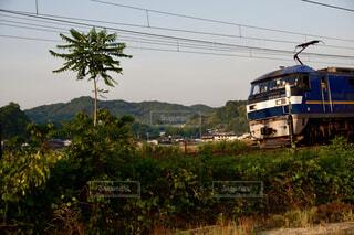 走る貨物列車の写真・画像素材[4464758]