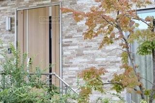 玄関先の写真の写真・画像素材[4821029]