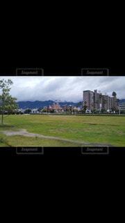 背景に木々のある大きな緑のフィールドの写真・画像素材[4769933]
