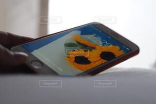 携帯を持つ手の写真・画像素材[4394579]