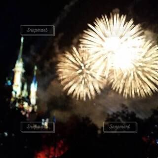 夜空に描く花火の写真・画像素材[4405988]