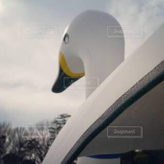 鳥の形をしたボートの写真・画像素材[4416633]