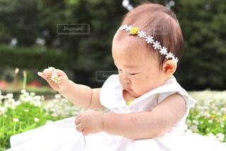 赤ちゃんバースデーフォトの写真・画像素材[4607950]