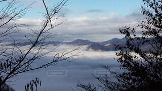 山梨 晩秋の雲海の写真・画像素材[4435597]