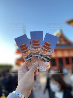 入場券ごしの清水寺の写真・画像素材[4414992]