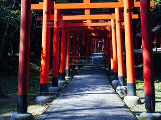 橿原神宮2の写真・画像素材[4413711]