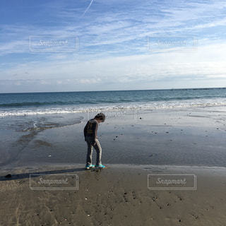 海の写真・画像素材[308645]