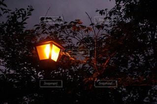 夜を照らす明かりの写真・画像素材[4468759]