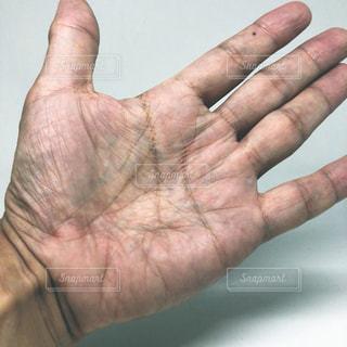 手相をみてもらう男性の手のひらの写真・画像素材[1513704]