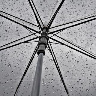 雨の写真・画像素材[194838]