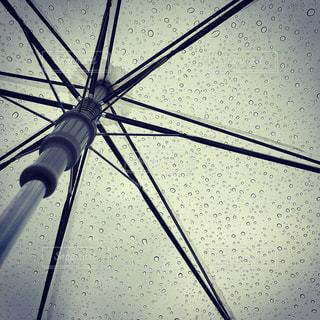 傘の写真・画像素材[214177]