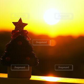 夕陽とクリスマスツリーの写真・画像素材[928903]