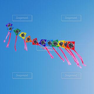 連凧の写真・画像素材[1750573]