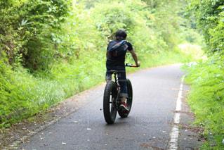男性,1人,20代,自然,アウトドア,夏,自転車,サイクリング,ファットバイク