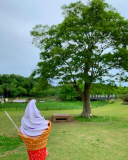 背景に木がある草原に座っている人の写真・画像素材[4440978]