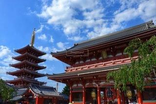 浅草浅草寺の写真・画像素材[4504400]