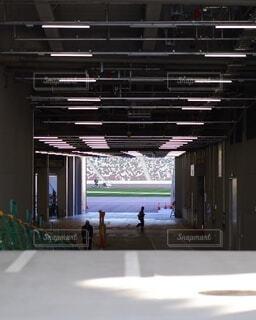 新国立競技場の写真・画像素材[4523243]