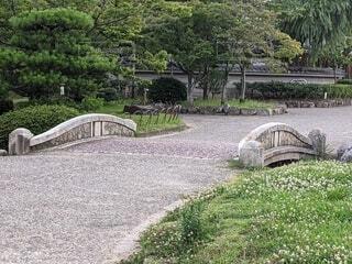 公園の石の道の写真・画像素材[4619083]