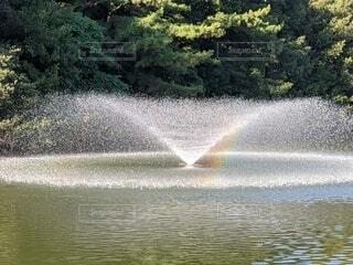 水の体の写真・画像素材[4653303]