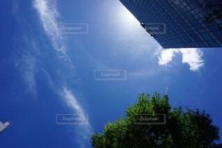 空を飛んでいる飛行機の写真・画像素材[4447991]