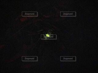 暗い部屋の写真・画像素材[4563724]