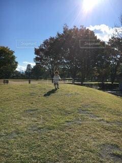 公園の丘を走る女の子の写真・画像素材[4654348]