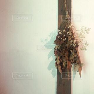 壁に飾られたドライフラワーの写真・画像素材[4535825]