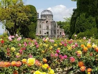 原爆ドームと、色彩鮮やかなバラ。の写真・画像素材[4456011]