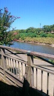 日本の風景 川と緑の写真・画像素材[4533515]