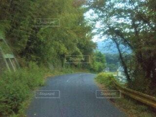 山道の下り坂の写真・画像素材[4556139]