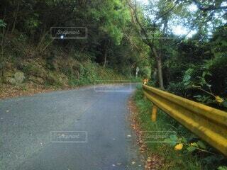 山道の曲がり角の写真・画像素材[4556138]