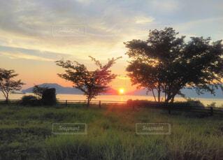 草原と夕日の写真・画像素材[4560354]