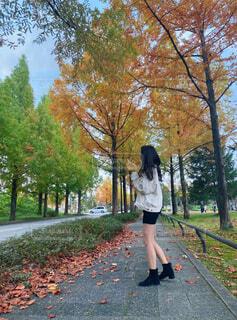 秋と女性の写真・画像素材[4455493]