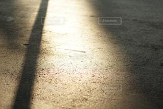 夕方の光と影の写真・画像素材[4458523]