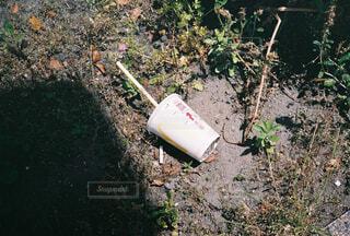茂みに落ちたマクドナルドの写真・画像素材[4463381]