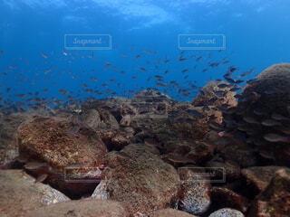 海の近くの岩の近くの写真・画像素材[4933301]