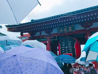 雨 - No.505965