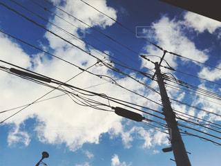 空を飛んでいる鳥の群れの写真・画像素材[1342456]