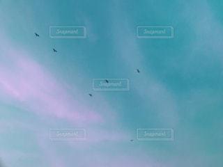 空に凧の飛行の人々 のグループの写真・画像素材[1356818]